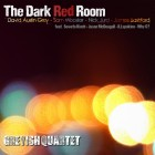 the-dark-red-room