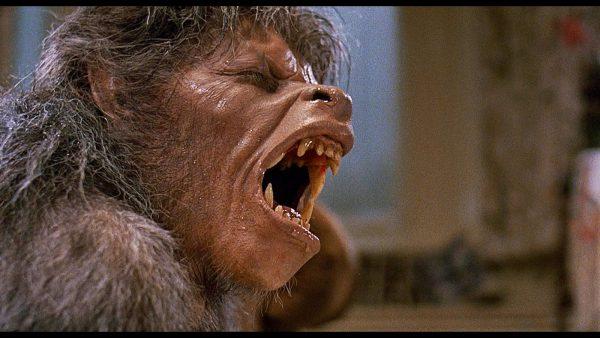 BREVIEW: An American Werewolf in London @ Dudley Castle 05.08.17