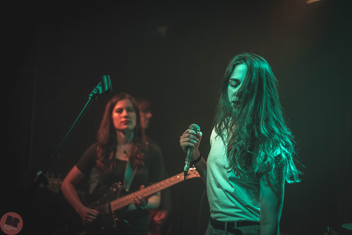 Average Sex @ Hare & Hounds 25.01.18 / Martin O'Callaghan - Birmingham Review